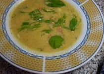 Sýrovo-zeleninová polévka