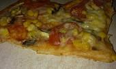 Domácí pizza - rychlovka