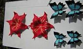 Dort s motýly