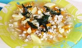 Kroupová polévka od zubaté žáby z Bruntálu