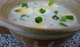 Lehká polévka ze syrovátky a podmáslí