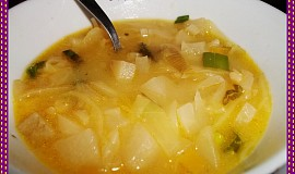 Třízeleninová polévka, i pro začátečníky