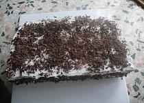Buchta s čokoládou