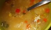 Kapustová polévka  s ovesnými vločkami