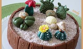 Dort Kaktusy