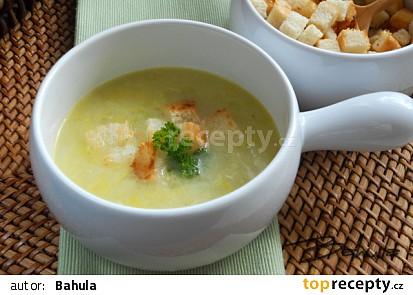 Pórková polévka s kvasnicemi