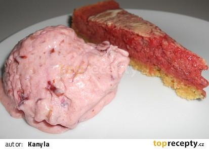 Švestková zmrzlina