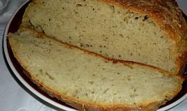 Chleba bez práce