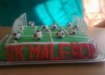 Fotbalové hřiště konec sezony 2012/13