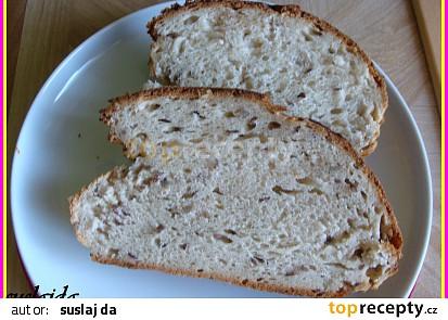 Semínkovo-majolkový chléb