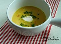 Jemná krémová kapustová polévka