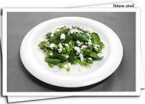 Kozí salátek
