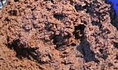 Ořechové řezy s ricottou
