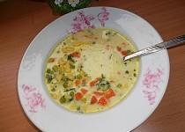 Mléčno - zeleninová polévka