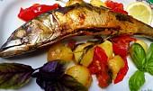 Makrela s rajčaty a bramborami