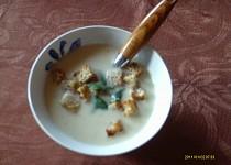 Smetanovosýrová česnečka