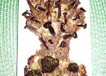 Houby na houbě