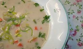 Domácí pórková polévka
