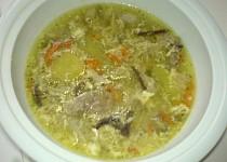Kuřecí polévka na čínsko-brněnský způsob