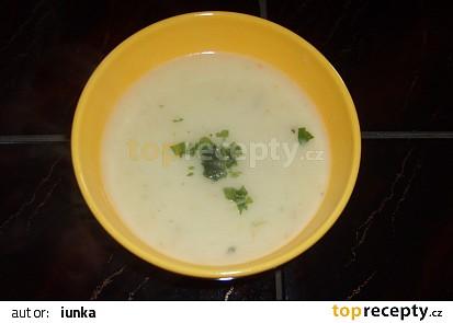 Vločková (ovesná) polévka bez zeleniny