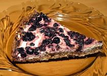 Zdravý celozrnný borůvkovo - tvarohový koláč (bez másla)