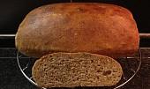 Domácí chleba bez hnětení v 2.0 (s droždím nebo kváskem)