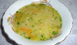 Pórková polévka s mrkví a vločkami