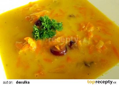 Indická mrkvová polévka