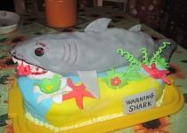 Jak se dělá žralok- sladký dort