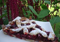 Ostružinový křehký koláč s čokoládou