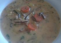 Gobova juha- slovinska houbova polevka