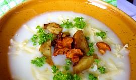 Sýrová polévka s lesními houbami