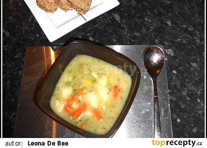 Bramborová polévka bez tuku a hub (velmi hustá)