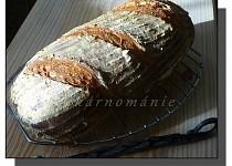 Denní chléb