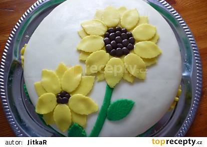 Dort slunečnice k narozeninám