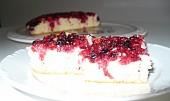 Rychlý rybízový koláč v remosce