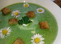 Jarní kopřivovo-špenátový krém