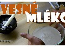 Ovesné mléko ( fitness )