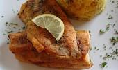 Citronový pstruh lososovitý