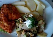 Kuřecí řízek na citrónovém pepři se salátem z kedlubny a čínského zelí
