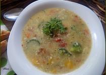 Super zdravá polévka