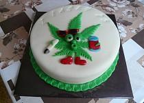 Dort s listem marihuany
