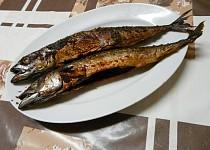 Naložené grilované makrely