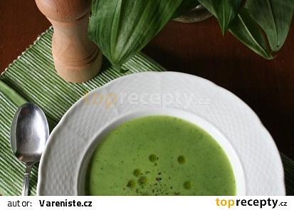 Polévka z medvědího česneku II.