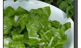 Salát z mladého mangoldu