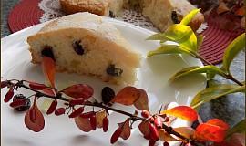 Jogurtové řezy s citronátem a brusinkami