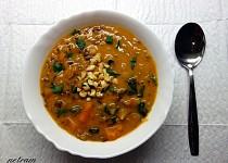 Africká arašídová polévka