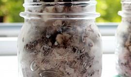 Domácí OREO zmrzlina