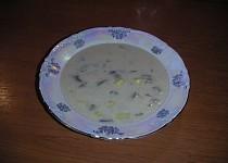 Ostrá polévka z hlívy ústřičné