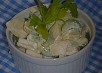 Salát z jablek a řapíkatého celeru